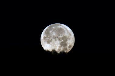Luna che tramonta, 1/20 sec a f/16 14 dicembre 2016, ore 07:37. Nikon d810a, Nikkor 800 mm f/8.0 asa 200
